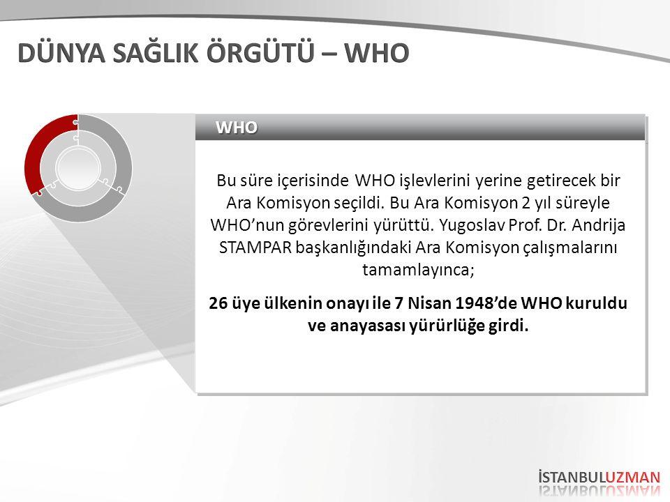 WHOWHO Bu süre içerisinde WHO işlevlerini yerine getirecek bir Ara Komisyon seçildi.