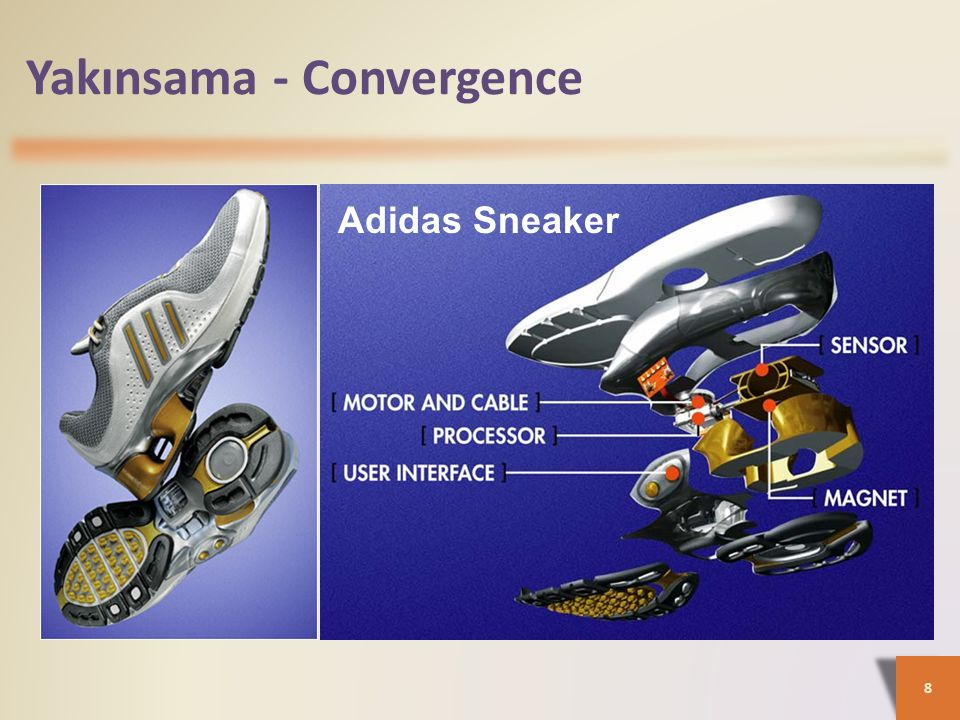 8 Adidas Sneaker