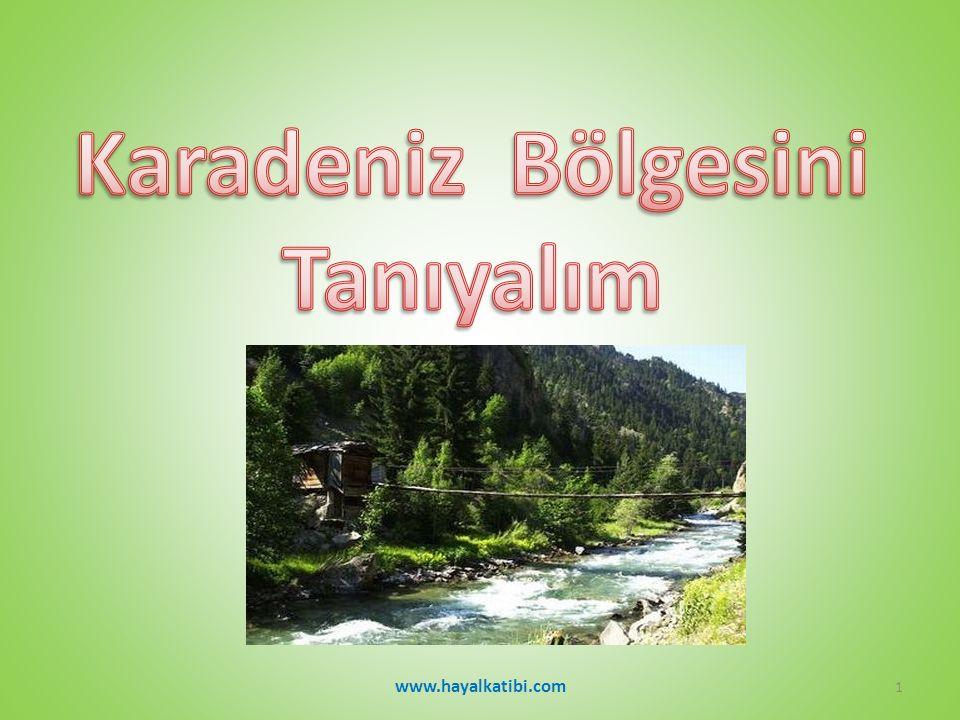 Karadeniz Bölgesi 'NİN HALAYI www.hayalkatibi.com2