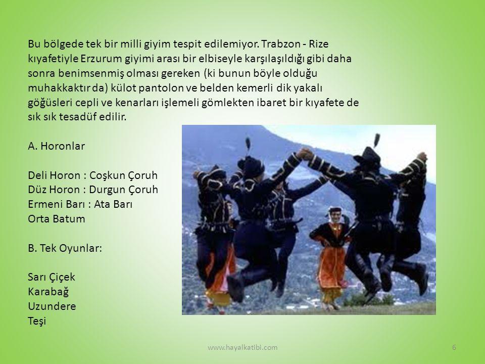 HAMSİLERİ www.hayalkatibi.com7