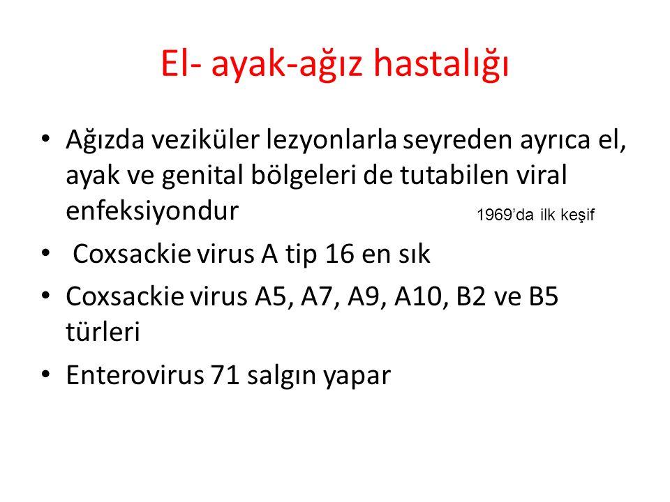 Şikayetler Ağız ve boğazda ağrı halsizlik Kusma (EV-71) Sert damak, dil ve bukkal mukozada maküler lezyonlar Bulgular