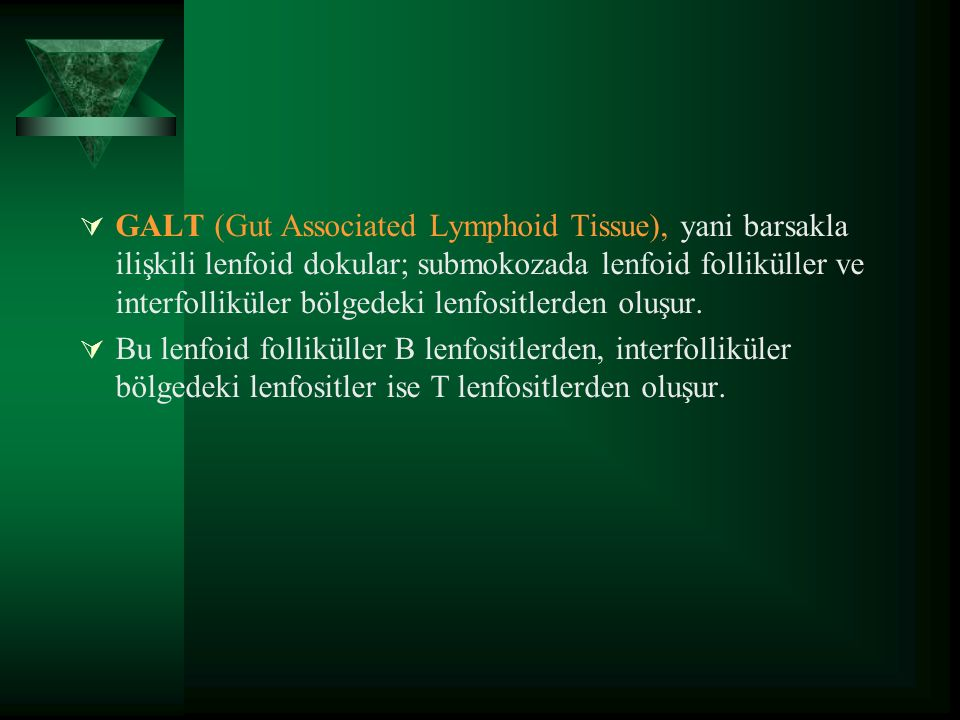  GALT (Gut Associated Lymphoid Tissue), yani barsakla ilişkili lenfoid dokular; submokozada lenfoid folliküller ve interfolliküler bölgedeki lenfositlerden oluşur.