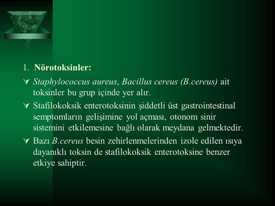 1. Nörotoksinler:  Staphylococcus aureus, Bacillus cereus (B.cereus) ait toksinler bu grup içinde yer alır.  Stafilokoksik enterotoksinin şiddetli ü