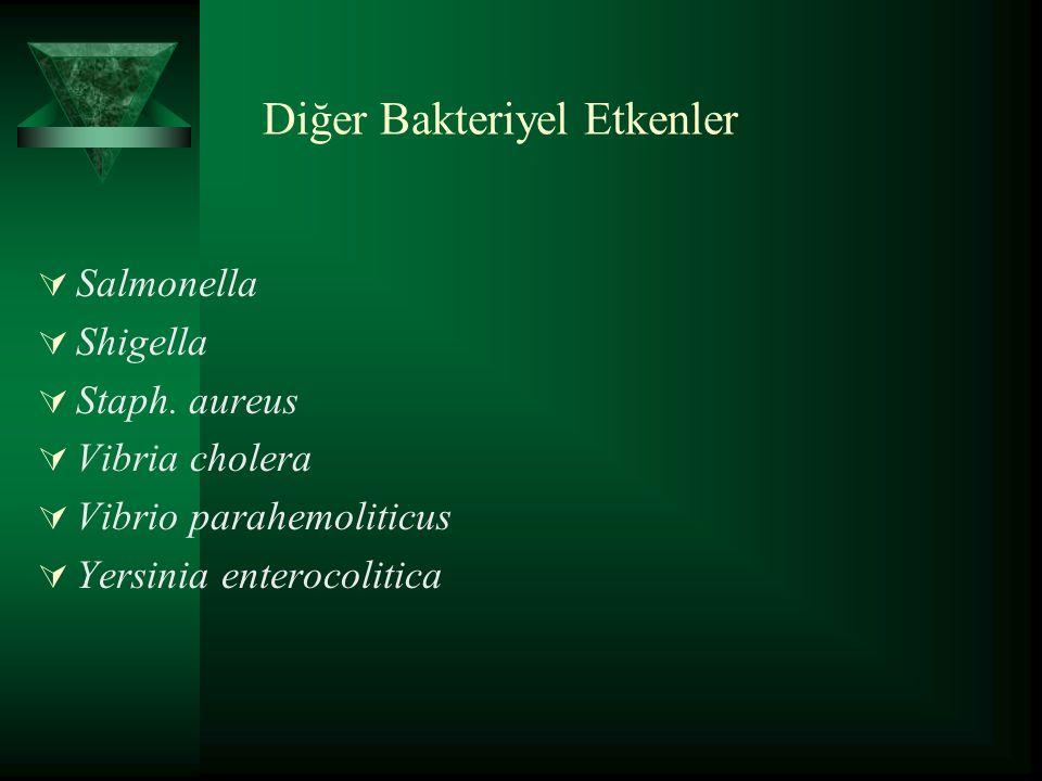 Diğer Bakteriyel Etkenler  Salmonella  Shigella  Staph.