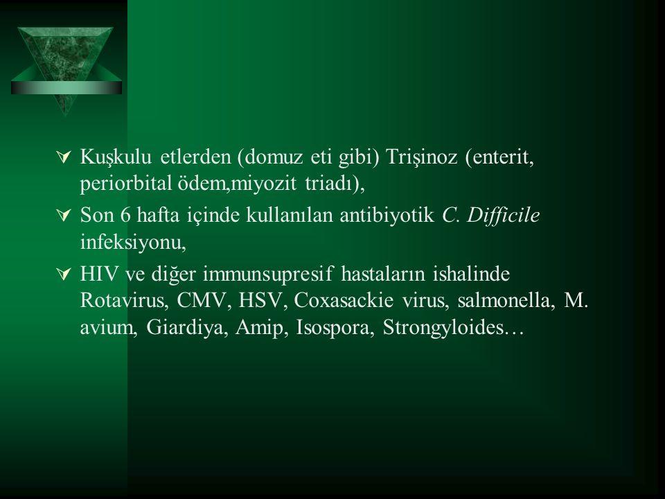  Kuşkulu etlerden (domuz eti gibi) Trişinoz (enterit, periorbital ödem,miyozit triadı),  Son 6 hafta içinde kullanılan antibiyotik C.