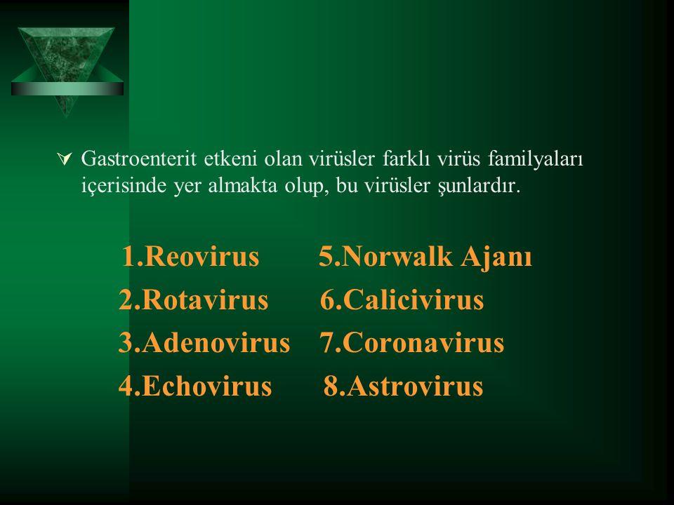  Gastroenterit etkeni olan virüsler farklı virüs familyaları içerisinde yer almakta olup, bu virüsler şunlardır.