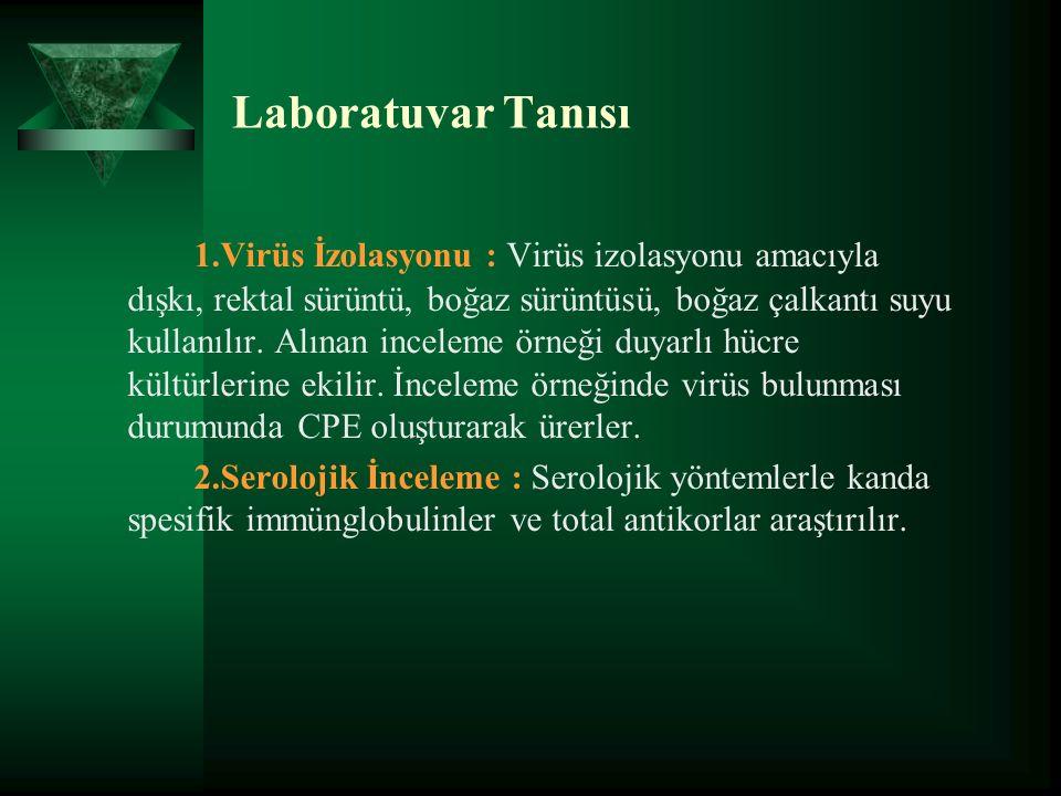 Laboratuvar Tanısı 1.Virüs İzolasyonu : Virüs izolasyonu amacıyla dışkı, rektal sürüntü, boğaz sürüntüsü, boğaz çalkantı suyu kullanılır.
