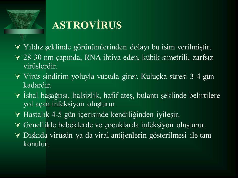 ASTROVİRUS  Yıldız şeklinde görünümlerinden dolayı bu isim verilmiştir.