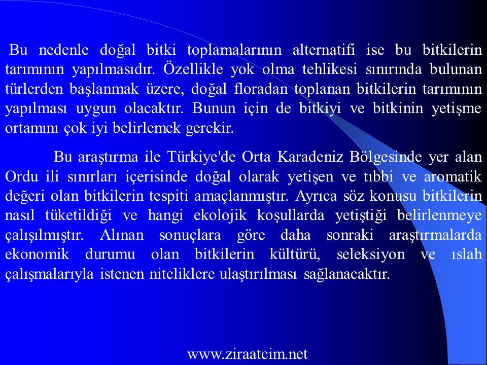TESPİT EDİLEN BİTKİLER VE ÖZELLİKLERİ 1.