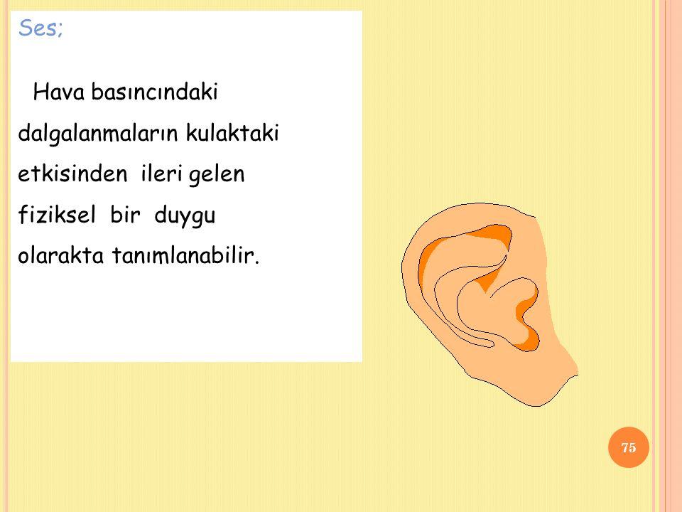 Ses; Hava basıncındaki dalgalanmaların kulaktaki etkisinden ileri gelen fiziksel bir duygu olarakta tanımlanabilir.