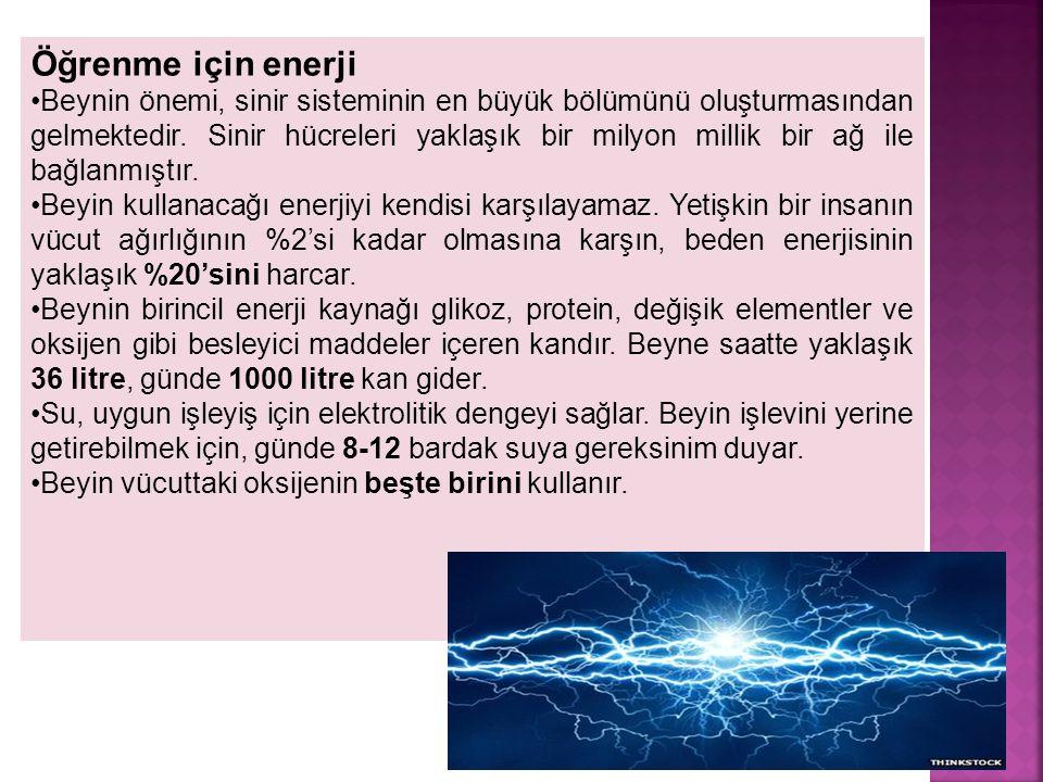 4 Öğrenme için enerji Beynin önemi, sinir sisteminin en büyük bölümünü oluşturmasından gelmektedir. Sinir hücreleri yaklaşık bir milyon millik bir ağ