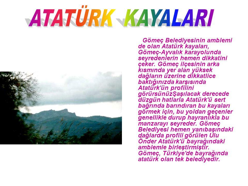 Gömeç Belediyesinin amblemi de olan Atatürk kayaları, Gömeç-Ayvalık karayolunda seyredenlerin hemen dikkatini çeker.