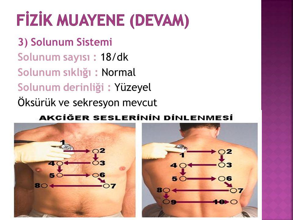 3) Solunum Sistemi Solunum sayısı : 18/dk Solunum sıklığı : Normal Solunum derinliği : Yüzeyel Öksürük ve sekresyon mevcut