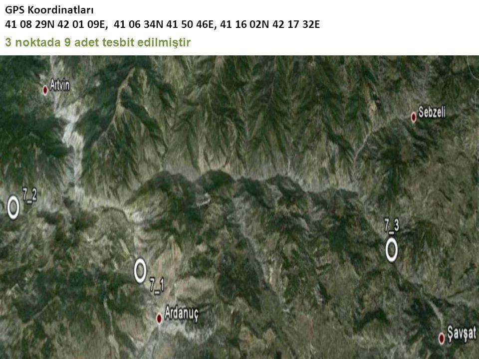 GPS Koordinatları 41 08 29N 42 01 09E, 41 06 34N 41 50 46E, 41 16 02N 42 17 32E 3 noktada 9 adet tesbit edilmiştir