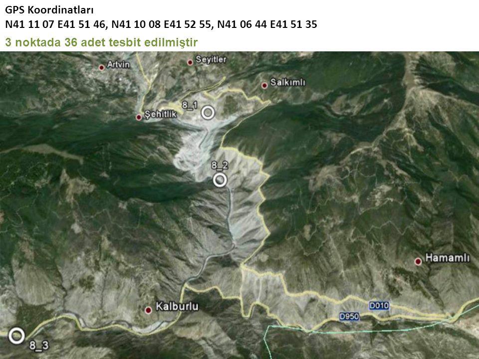 GPS Koordinatları N41 11 07 E41 51 46, N41 10 08 E41 52 55, N41 06 44 E41 51 35 3 noktada 36 adet tesbit edilmiştir