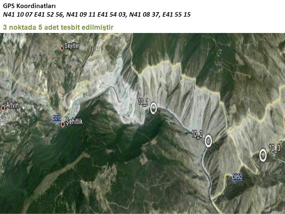 GPS Koordinatları N41 10 07 E41 52 56, N41 09 11 E41 54 03, N41 08 37, E41 55 15 3 noktada 5 adet tesbit edilmiştir