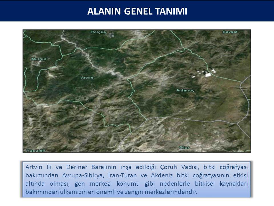 ALANIN GENEL TANIMI