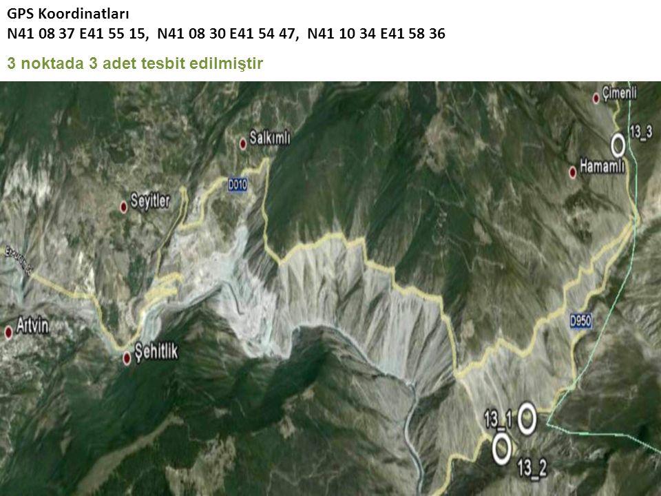 GPS Koordinatları N41 08 37 E41 55 15, N41 08 30 E41 54 47, N41 10 34 E41 58 36 3 noktada 3 adet tesbit edilmiştir