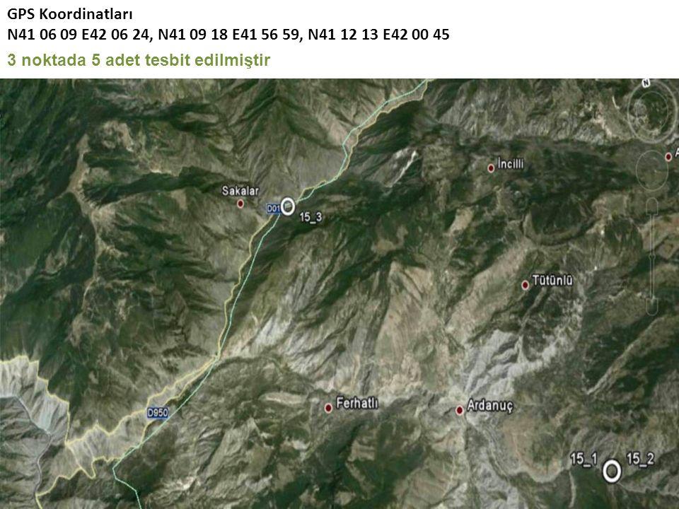 GPS Koordinatları N41 06 09 E42 06 24, N41 09 18 E41 56 59, N41 12 13 E42 00 45 3 noktada 5 adet tesbit edilmiştir