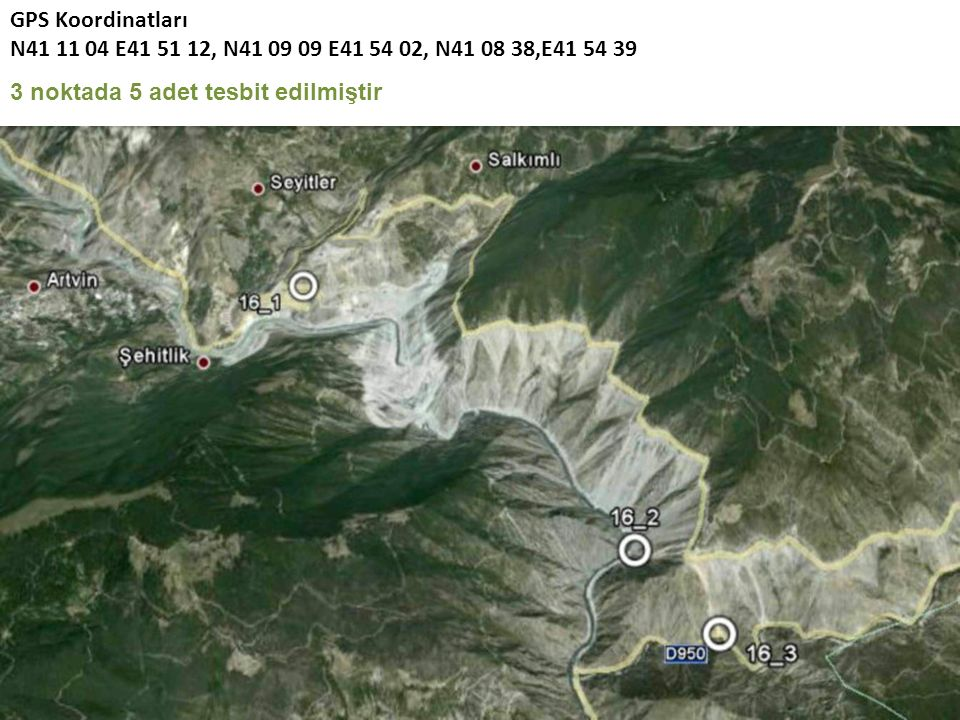 GPS Koordinatları N41 11 04 E41 51 12, N41 09 09 E41 54 02, N41 08 38,E41 54 39 3 noktada 5 adet tesbit edilmiştir