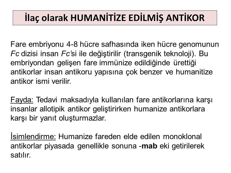 Fare embriyonu 4-8 hücre safhasında iken hücre genomunun Fc dizisi insan Fc'si ile değiştirilir (transgenik teknoloji). Bu embriyondan gelişen fare im