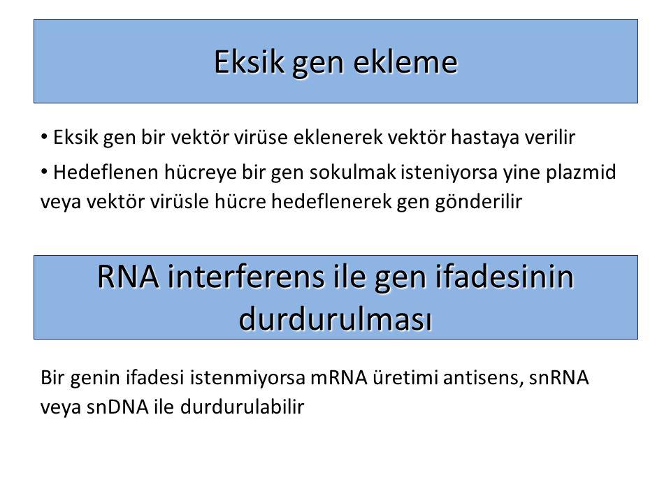 Eksik gen ekleme Eksik gen bir vektör virüse eklenerek vektör hastaya verilir Hedeflenen hücreye bir gen sokulmak isteniyorsa yine plazmid veya vektör