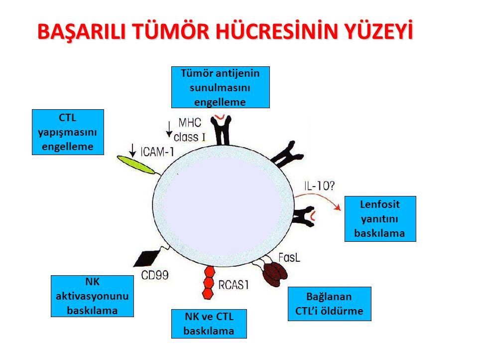 BAŞARILI TÜMÖR HÜCRESİNİN YÜZEYİ NK aktivasyonunu baskılama CTL yapışmasını engelleme Tümör antijenin sunulmasını engelleme Lenfosit yanıtını baskılam