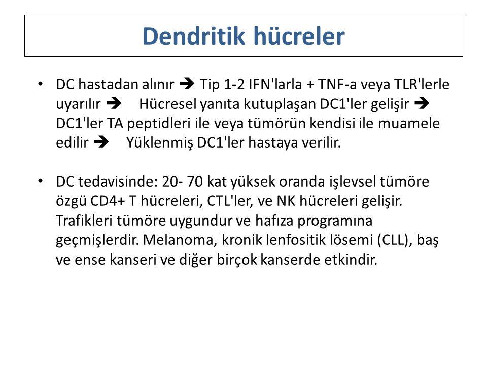 DC hastadan alınır  Tip 1-2 IFN'larla + TNF-a veya TLR'lerle uyarılır  Hücresel yanıta kutuplaşan DC1'ler gelişir  DC1'ler TA peptidleri ile veya