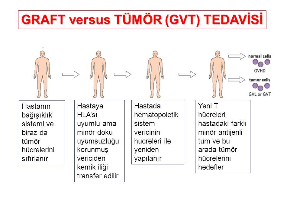GRAFT versus TÜMÖR (GVT) TEDAVİSİ Hastanın bağışıklık sistemi ve biraz da tümör hücrelerini sıfırlanır Hastaya HLA'sı uyumlu ama minör doku uyumsuzluğ