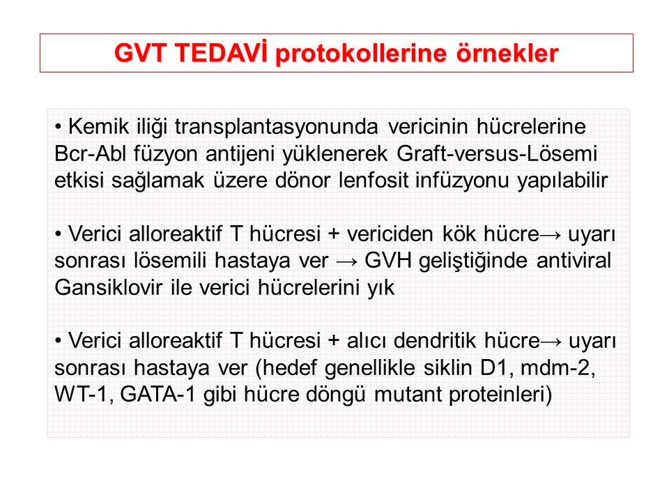 Kemik iliği transplantasyonunda vericinin hücrelerine Bcr-Abl füzyon antijeni yüklenerek Graft-versus-Lösemi etkisi sağlamak üzere dönor lenfosit infü
