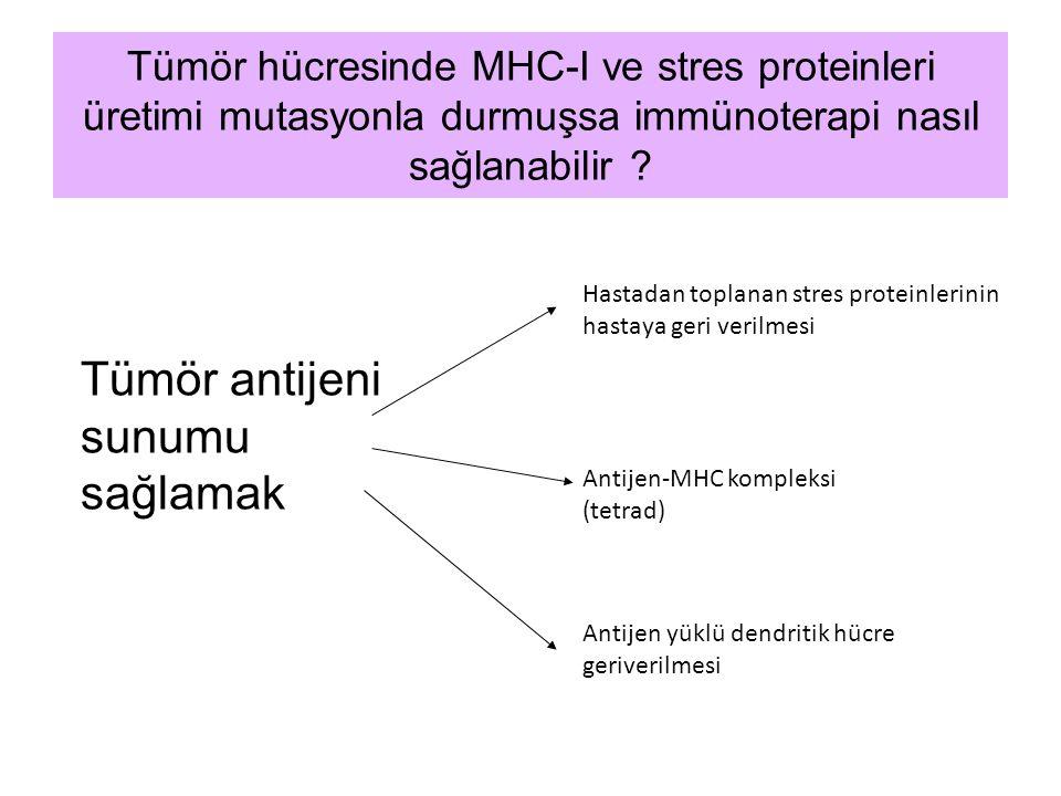 Tümör hücresinde MHC-I ve stres proteinleri üretimi mutasyonla durmuşsa immünoterapi nasıl sağlanabilir ? Tümör antijeni sunumu sağlamak Antijen-MHC k