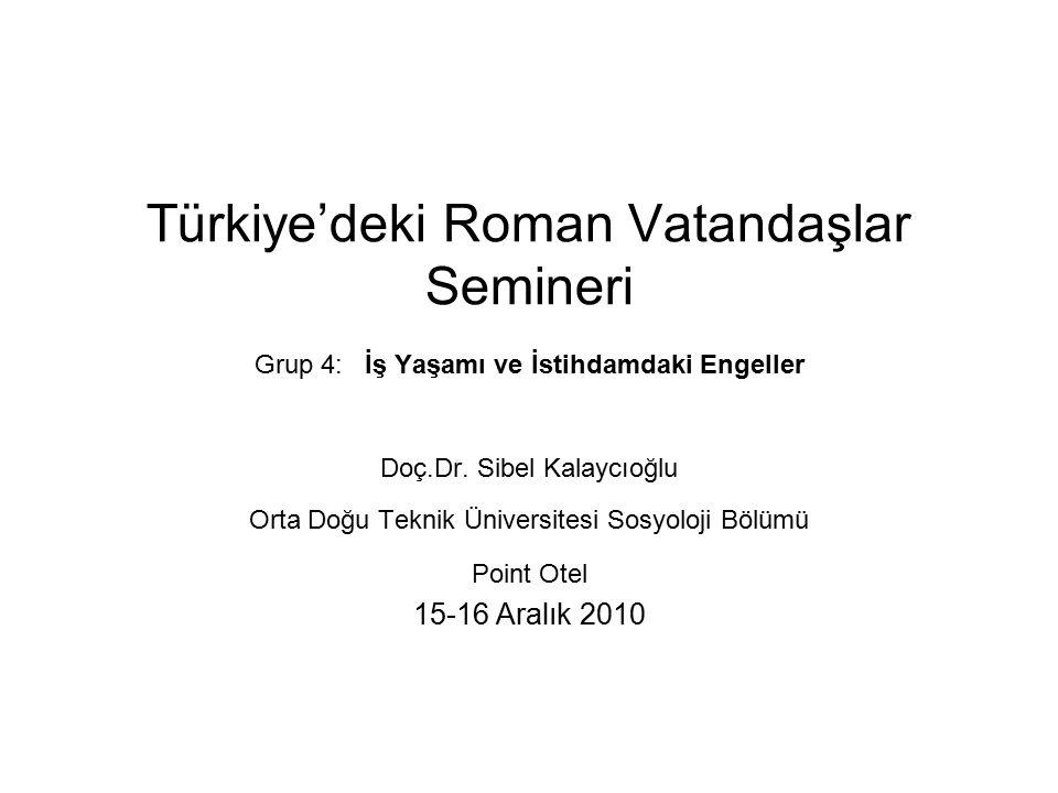 Türkiye'deki Roman Vatandaşlar Semineri Grup 4: İş Yaşamı ve İstihdamdaki Engeller Doç.Dr.