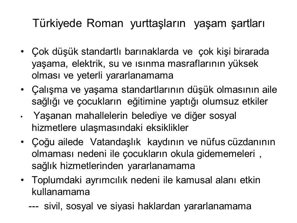 Türkiyede Roman yurttaşların kendileri ve çocukları için gelecekteki iş ve yaşam beklentileri Kendilerinin işleri babalarından devralmaları, benzer yaşam ve iş koşullarının en az üç nesil boyu sürmesi Çocuklarında erken yaşta okulu bırakarak babaları ve anneleri ile işe çıkmaları Çocukların geleceğinin de kendilerinden farklı olmayacağına inanma Çocukların eğitime inanmamaları ve okul bırakma eğilimi Bir çeşit yoksulluk kültürünün gelişmiş olması ve bunun değişmeyeceği inancını geliştirmiş olmak