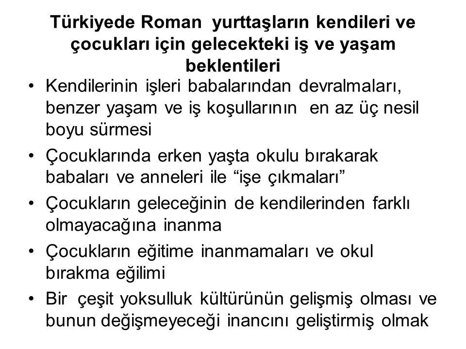 Değerlendirme Sosyal politikalar ve yurttaşlık açısından Türkiye'deki Roman Yurttaşların iş ve istihdam açısından sorunları neler ve çözüm yolları .