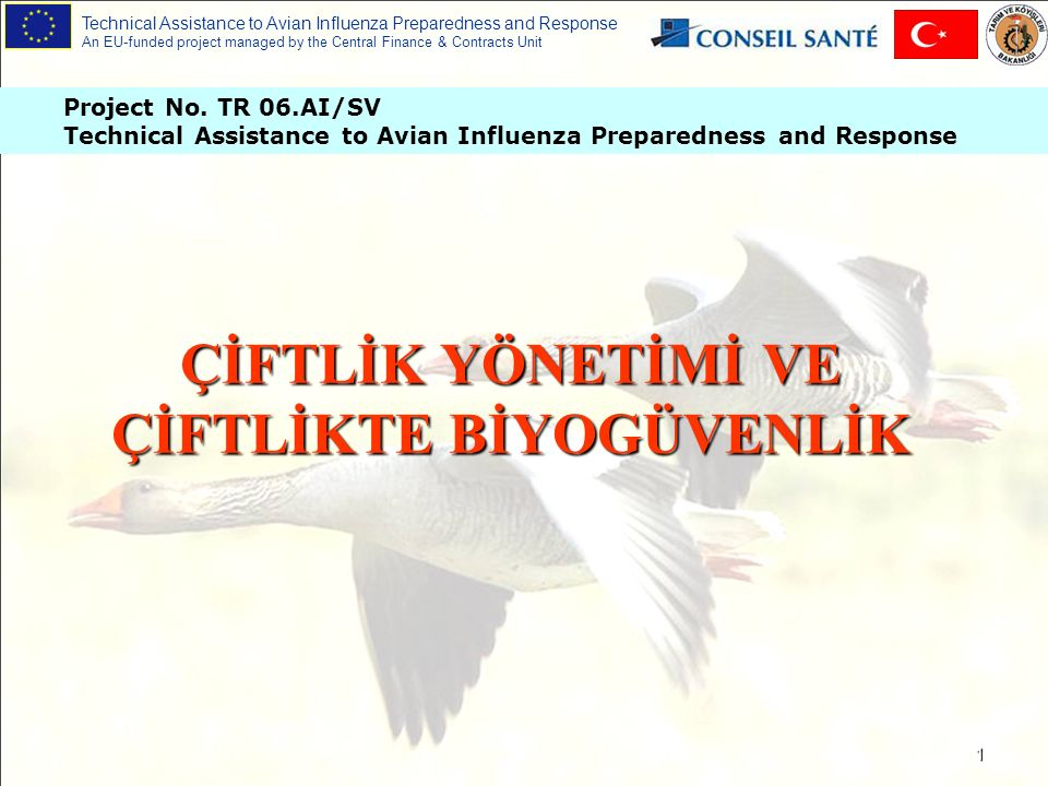 Technical Assistance to Avian Influenza Preparedness and Response An EU-funded project managed by the Central Finance & Contracts Unit Project No.