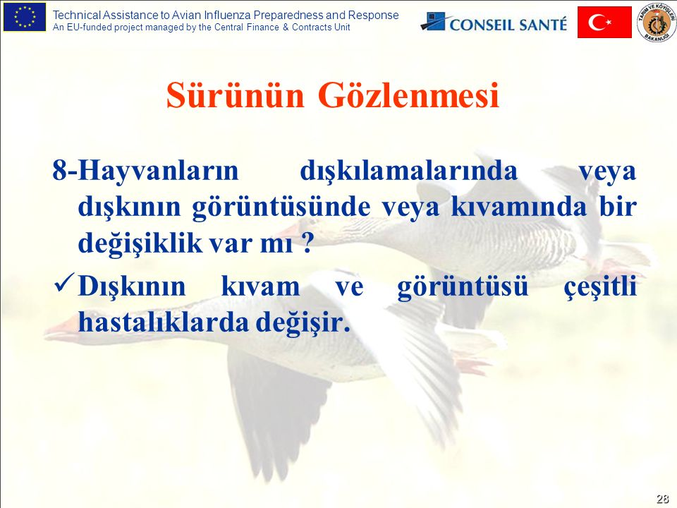 Technical Assistance to Avian Influenza Preparedness and Response An EU-funded project managed by the Central Finance & Contracts Unit 28 8-Hayvanları