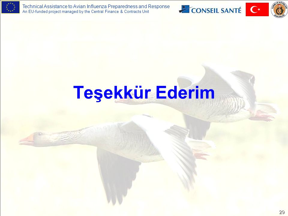 Technical Assistance to Avian Influenza Preparedness and Response An EU-funded project managed by the Central Finance & Contracts Unit 29 Teşekkür Ederim