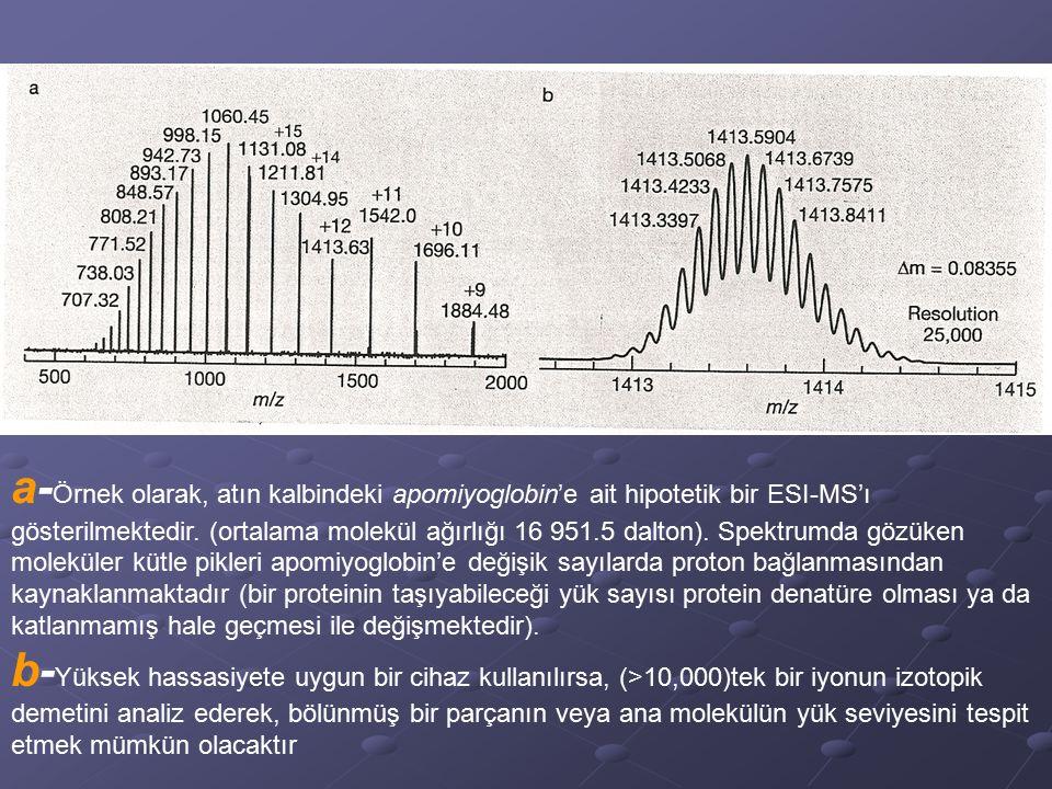 a- Örnek olarak, atın kalbindeki apomiyoglobin'e ait hipotetik bir ESI-MS'ı gösterilmektedir. (ortalama molekül ağırlığı 16 951.5 dalton). Spektrumda