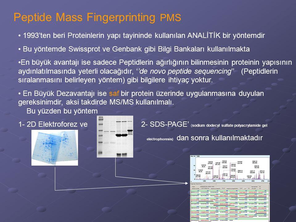 Peptide Mass Fingerprinting PMS 1993'ten beri Proteinlerin yapı tayininde kullanılan ANALİTİK bir yöntemdir Bu yöntemde Swissprot ve Genbank gibi Bilg