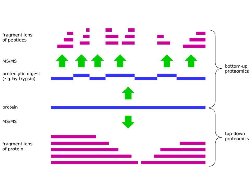 TOF/TOF MS den bir örnek Tandem (Aşamalı) MS/MS söz konusu olduğu zaman CID (Collision-Induced Dissociation) adı verilen bir parçalanma tekniği söz konusu olmakta, bu yöntem başka MS yöntemlerinde kullanmamakta ve sadece MS/MS aşamalarının ortasında daha iyi sonuç elde etmek için kullanılabilmektedir