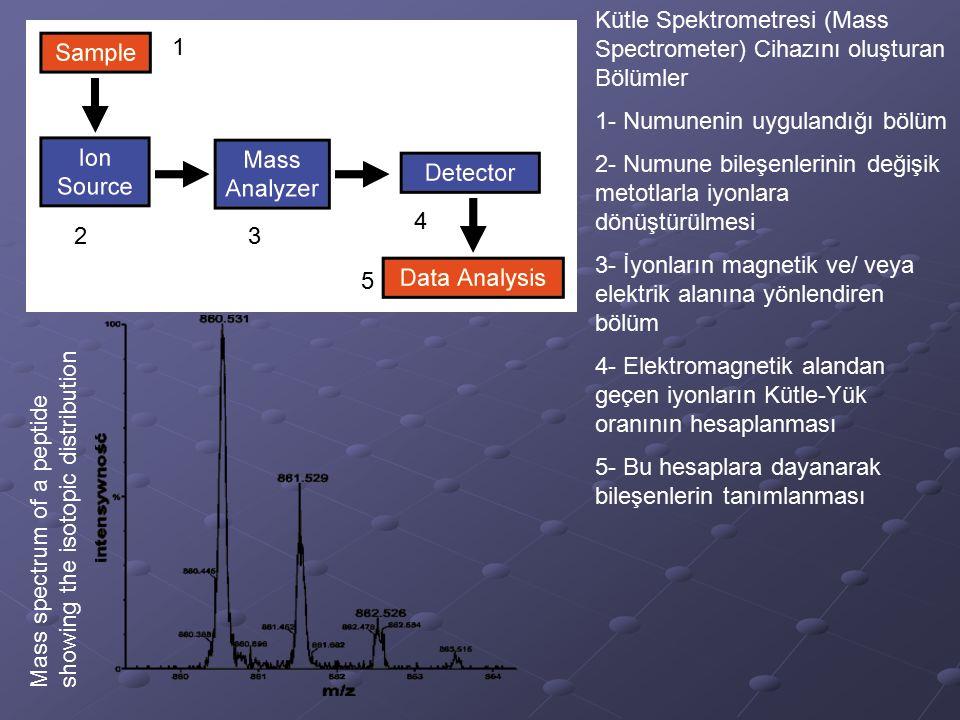 1 23 4 5 Kütle Spektrometresi (Mass Spectrometer) Cihazını oluşturan Bölümler 1- Numunenin uygulandığı bölüm 2- Numune bileşenlerinin değişik metotlar
