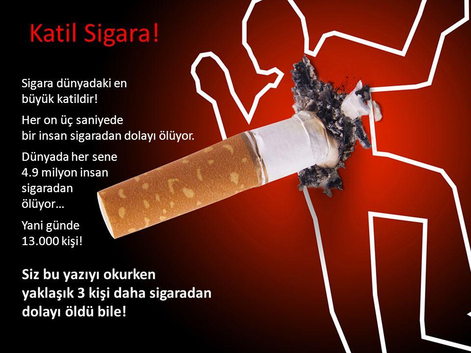 Katil Sigara! Sigara dünyadaki en büyük katildir! Her on üç saniyede bir insan sigaradan dolayı ölüyor. Dünyada her sene 4.9 milyon insan sigaradan öl