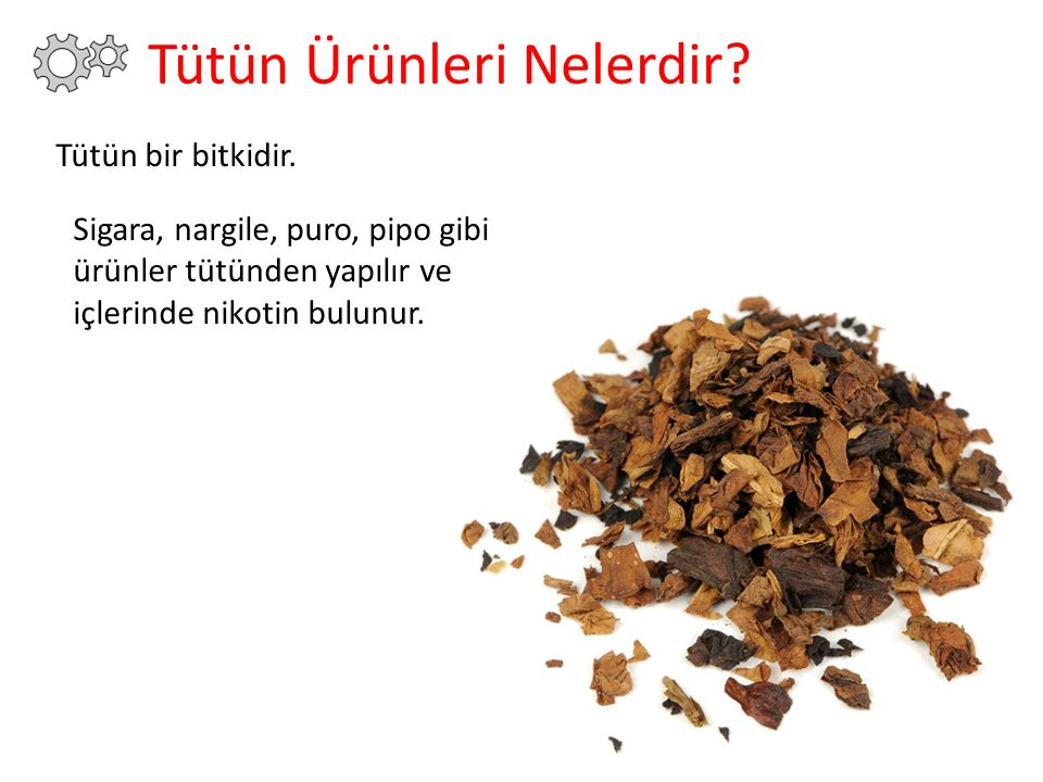 Tütün bir bitkidir. Sigara, nargile, puro, pipo gibi ürünler tütünden yapılır ve içlerinde nikotin bulunur.