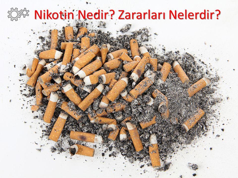 Nikotin Nedir.Nikotinin Zararları Nelerdir.