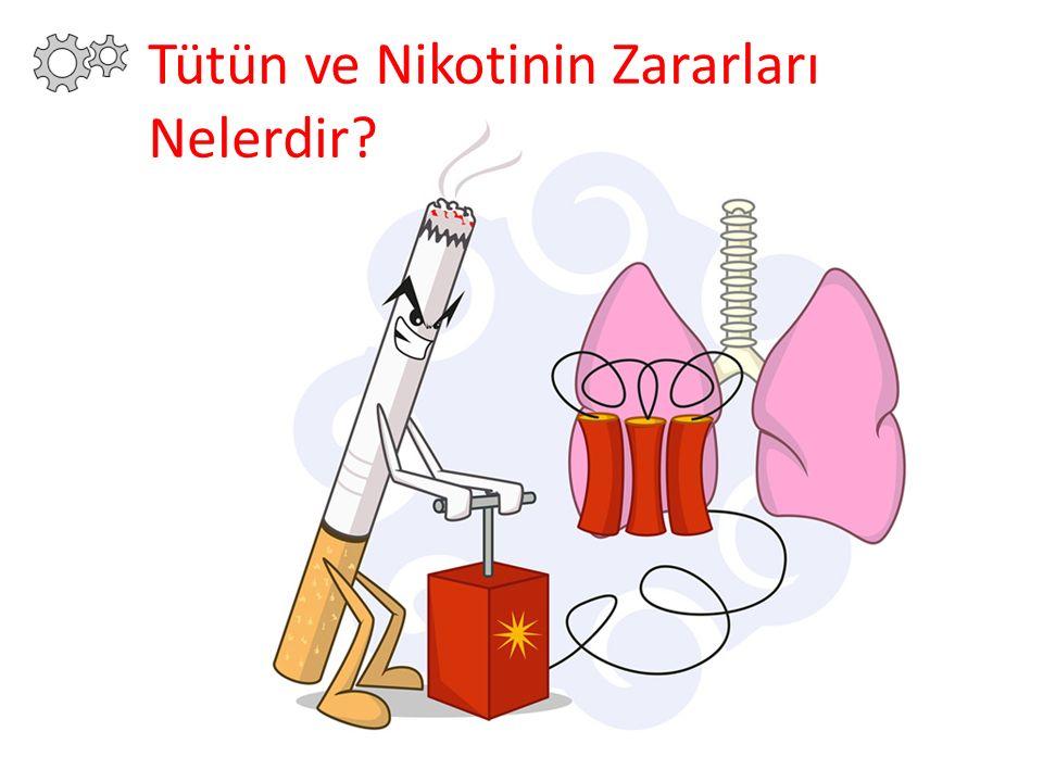Tütün ve Nikotinin Zararları Nelerdir