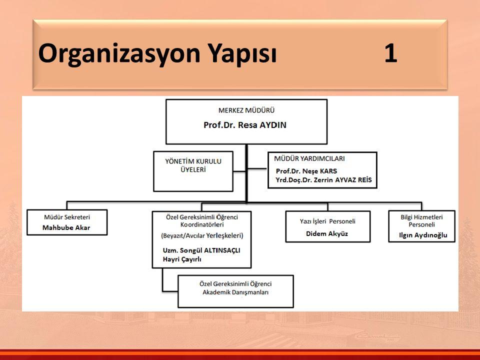 Organizasyon Yapısı 1