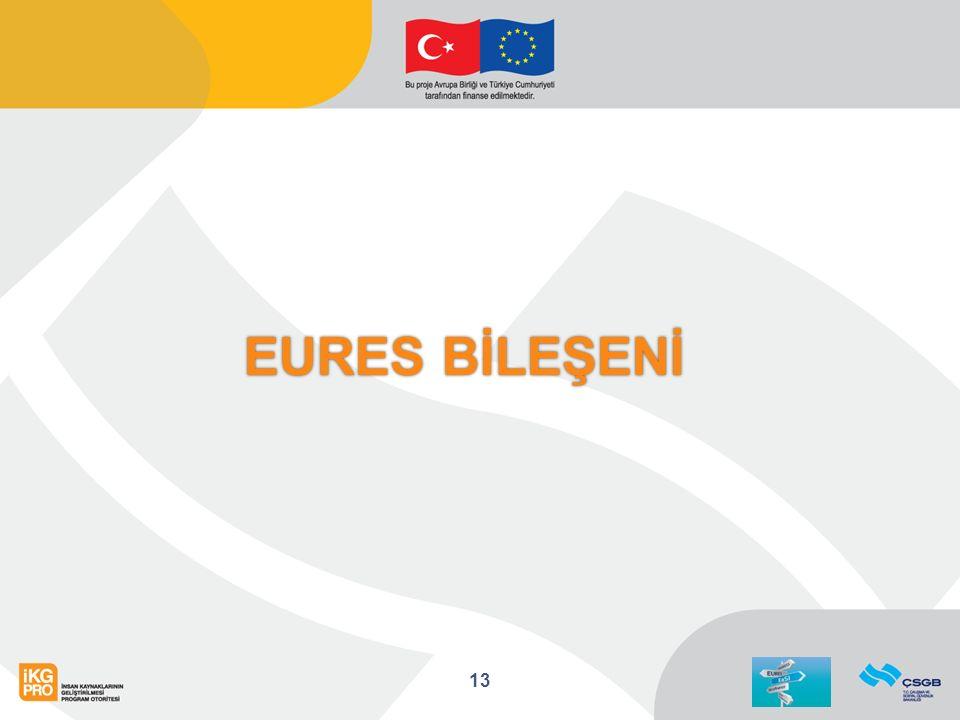 EURES BİLEŞENİ 13