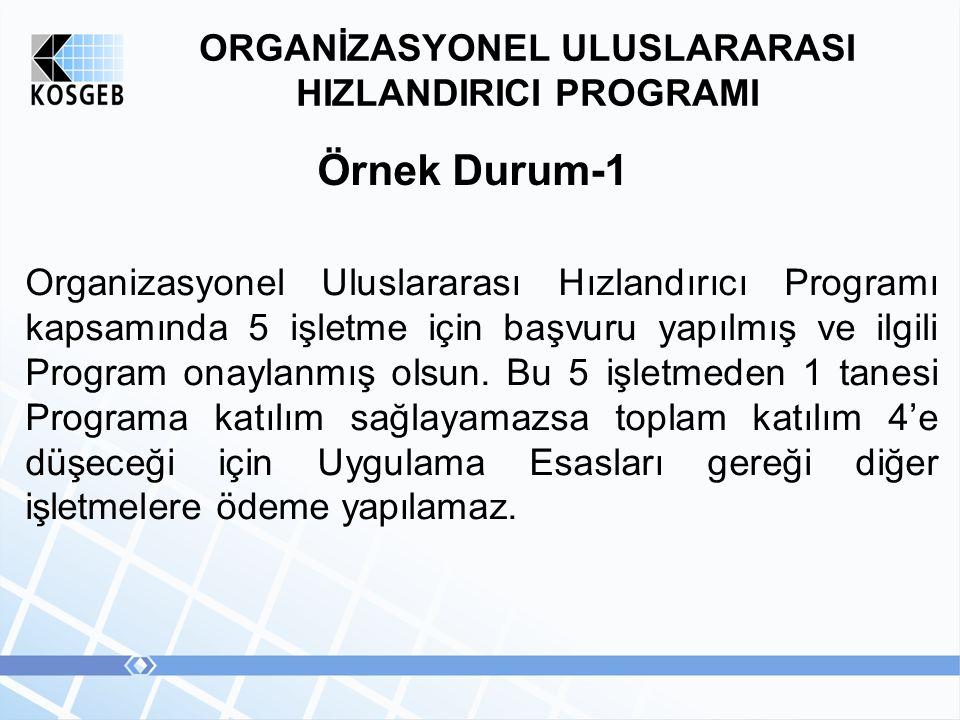 ORGANİZASYONEL ULUSLARARASI HIZLANDIRICI PROGRAMI Örnek Durum-1 Organizasyonel Uluslararası Hızlandırıcı Programı kapsamında 5 işletme için başvuru yapılmış ve ilgili Program onaylanmış olsun.