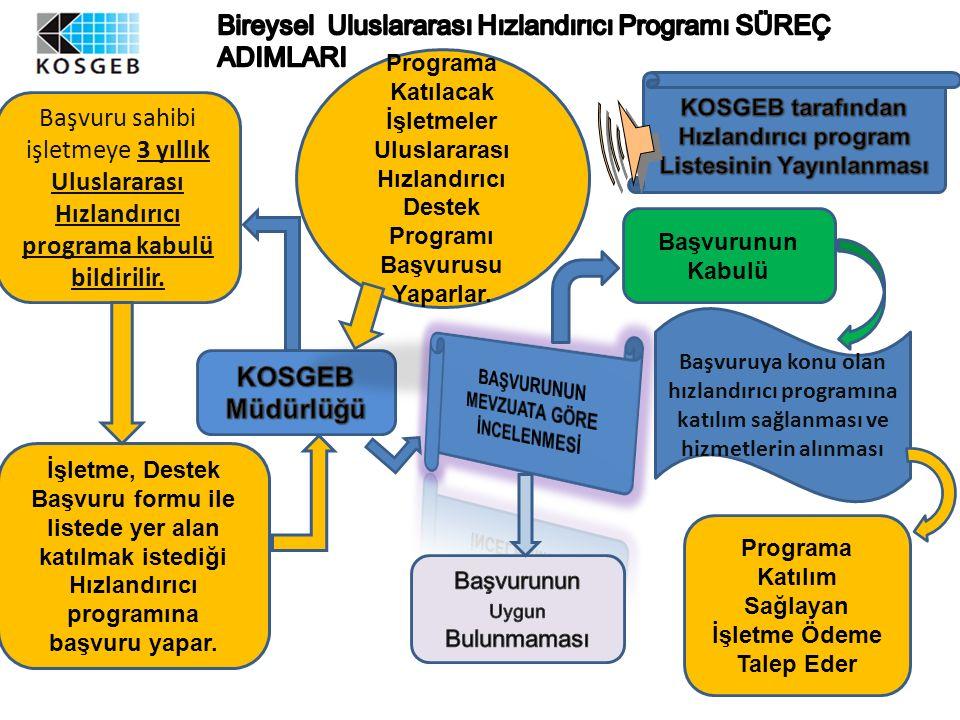 Programa Katılacak İşletmeler Uluslararası Hızlandırıcı Destek Programı Başvurusu Yaparlar. Programa Katılım Sağlayan İşletme Ödeme Talep Eder Başvuru