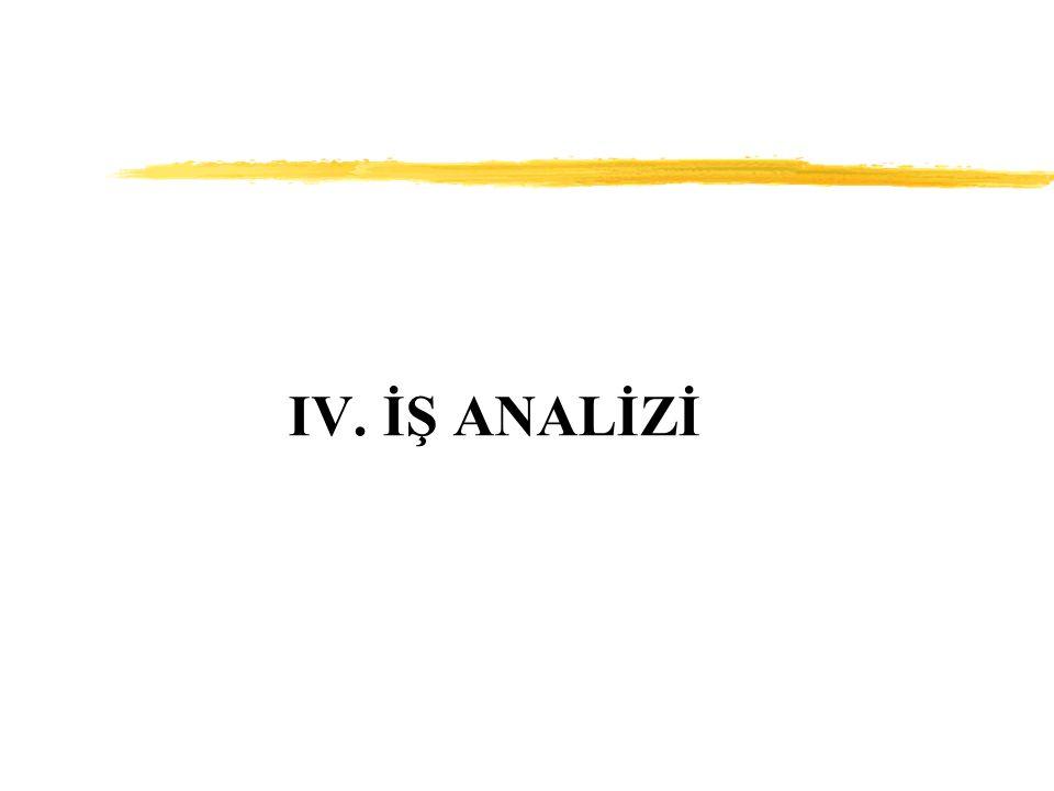 IV. İŞ ANALİZİ